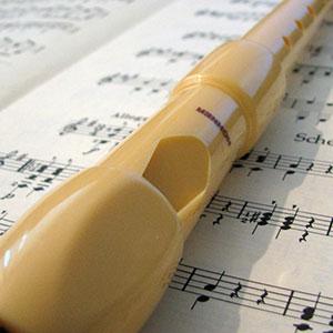 blokflavta ali kljunasta flavta za igranje po notah