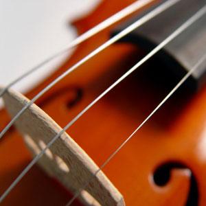 kobilica violine